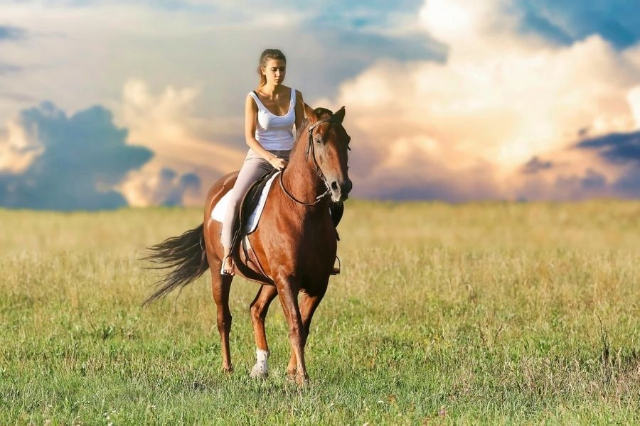 The Most Common Beginner Horse Riding Mistakes