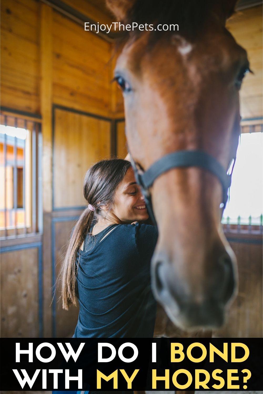 HOW DO I BOND WITH MY HORSE?
