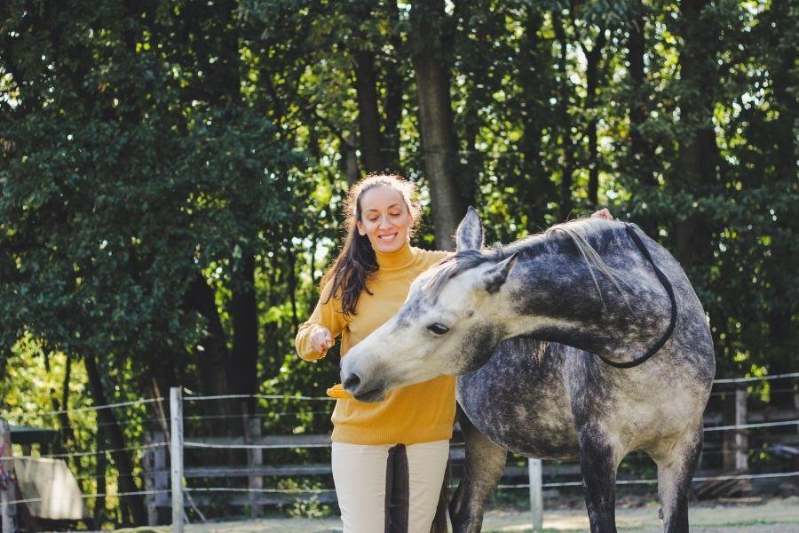 TEACH YOUR HORSE TO GIVE A HUG (1)