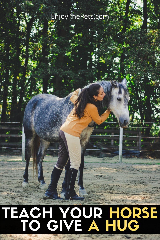 TEACH YOUR HORSE TO GIVE A HUG